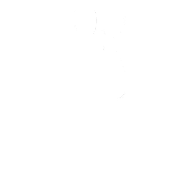 Home - Design Union
